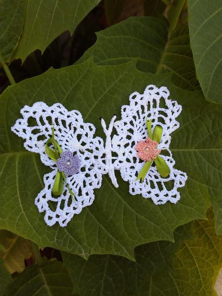 Farfalla grande inamidata